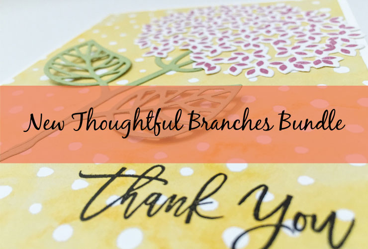 The New Thoughtful Branches Bundle Is Here