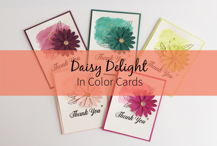 Daisy Delight In Color Cards