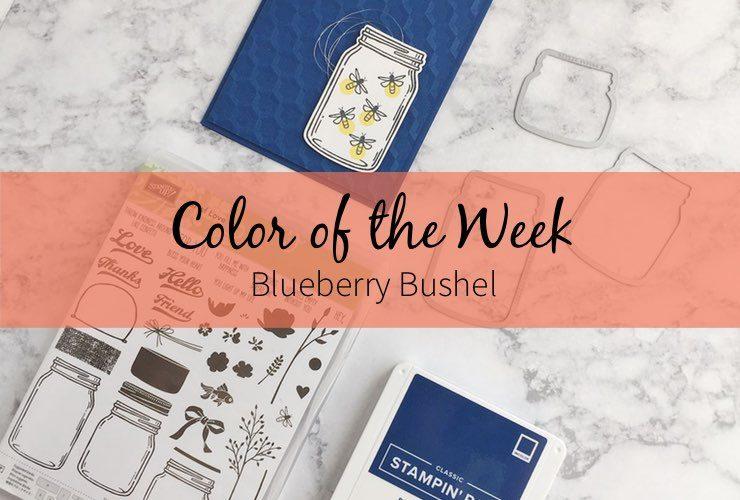 Color of the Week – Blueberry Bushel