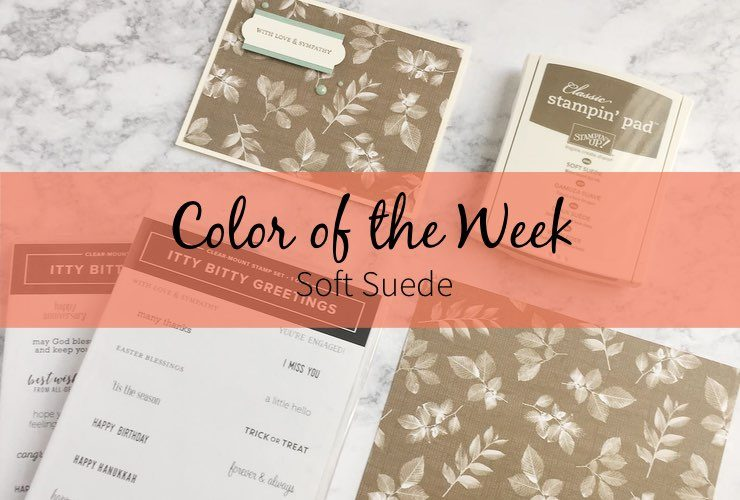 Color of the Week – Soft Suede