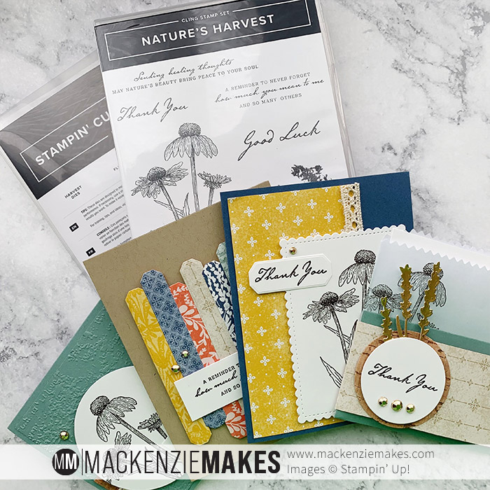Fall Harvest Class – Sign up for this fun fall-themed paper crafting class featuring the Nature's Harvest Bundle from Stampin' Up! | #mackenziemakes #stampinup | www.mackenziemakes.com